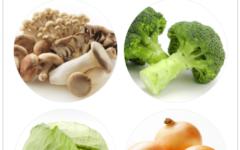 乳酸菌生産物質とは何?乳酸菌との違いについて